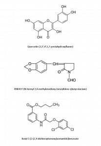 HSP40 Drug Discovery - Quercetin, KNK437, butyl 3-[2-(2,4-dichlorophenoxy)acetamido]benzoate